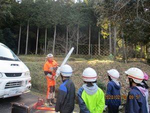 現地で林業体験